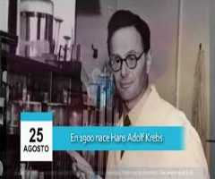 Hans Adolf Krebs