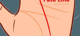 fate line