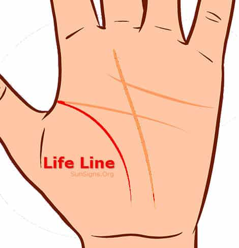 how to read the lifeline on your palm