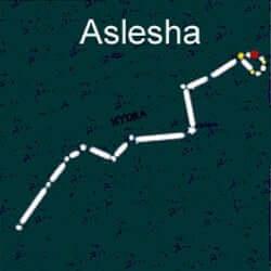 ashlesha birthstar