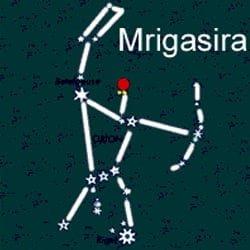 mrigashira