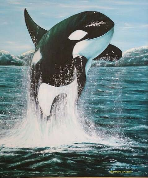 orca totem