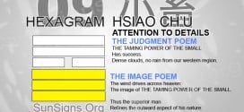 I Ching 9 meaning - Hexagram 9 Attention to Detail