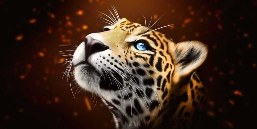 The Jaguar is the fourteenth Mayan day sign
