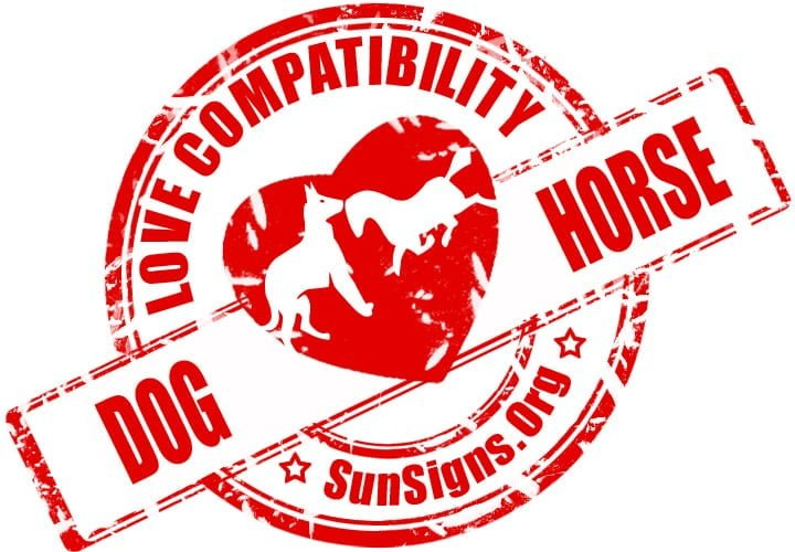 The Dog and Horse compatibility is mind blowing and matches in all aspects.
