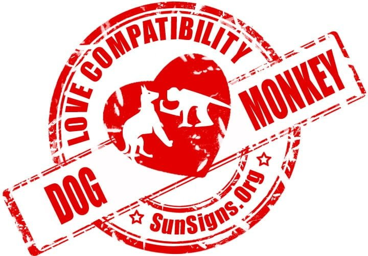 The Dog and Monkey compatibility is fiery but can sustain if both of them are ready to understand each other.