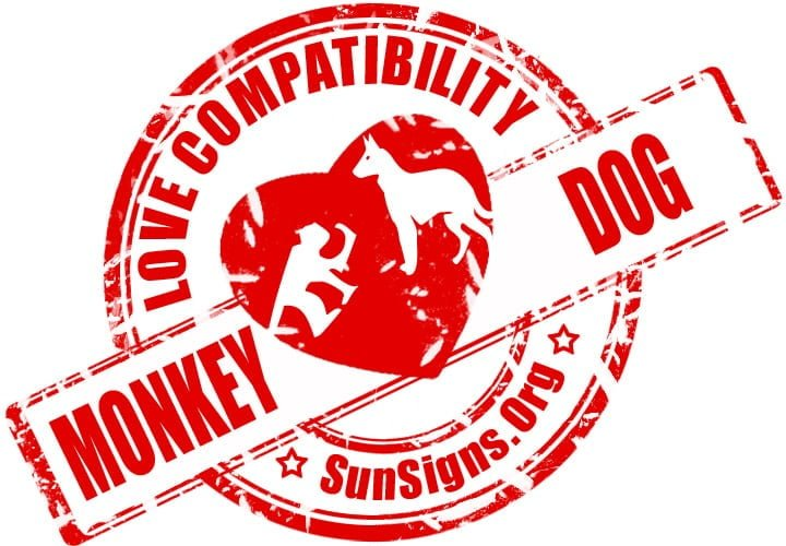 Chinese Monkey Dog Compatibility. Generally, the monkey and dog soulmates can be a couple who has a lot of fun together.