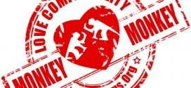 Chinese Monkey Monkey Compatibility.