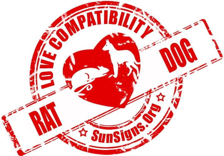 rat dog compatibility