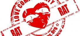 rat rat compatibility