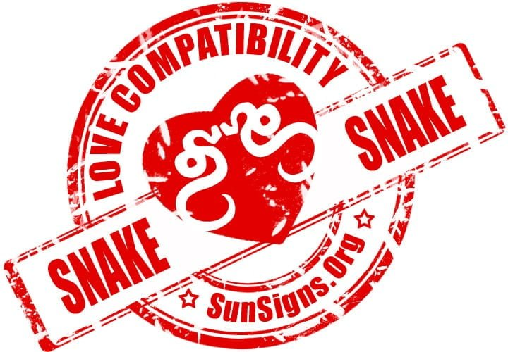 Chinese Snake Snake Compatibility. Will the Snake Snake love compatibility be able to have long lasting relationship?