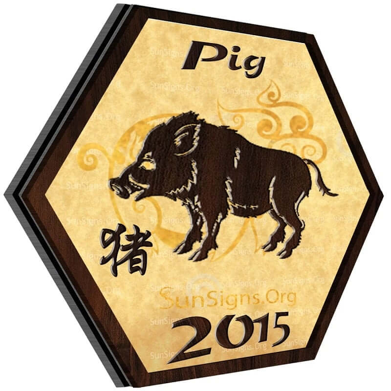 Pig Horoscope 2015 Predictions Sun Signs