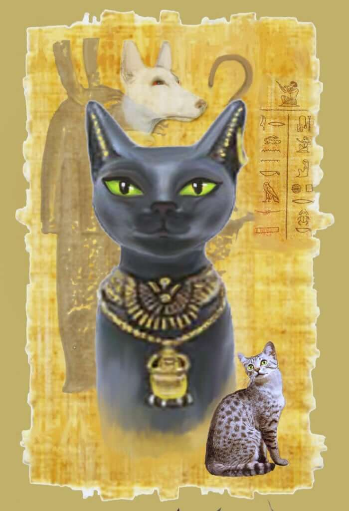 People born under this Egyptian horoscope sign Bastet are always searching for balance and peace.