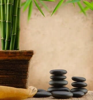 To create a good quality of air for your Feng Shui office, you can include many Feng Shui plants