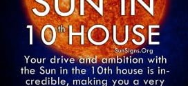 Sun In 10th House. Your drive and ambition with the Sun in the 10th house is incredible, making you a very hard-working person.