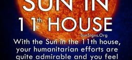 Sun In 11th House. With the Sun in the 11th house, your humanitarian efforts are quite admirable and you feel the need to help others.