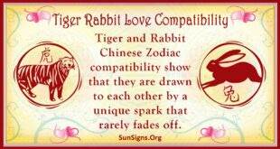 tiger rabbit compatibility
