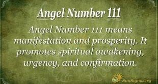 Angel Number 111