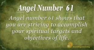 angel number 61