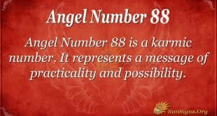 Angel Number 88