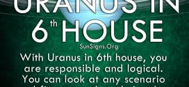 You work hard in the sixth house, but Uranus allows you to get creative with your workload