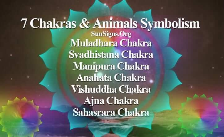 seven-chakras-animals