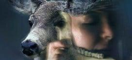 Animal Totems As A Life Saver