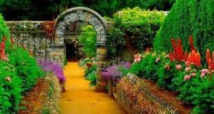 garden-symbolism
