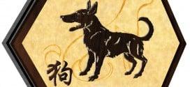 Dog 2018