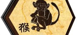 Monkey 2017