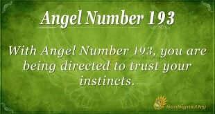 angel number 193