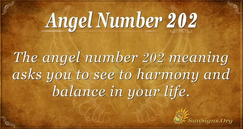 angel number 202