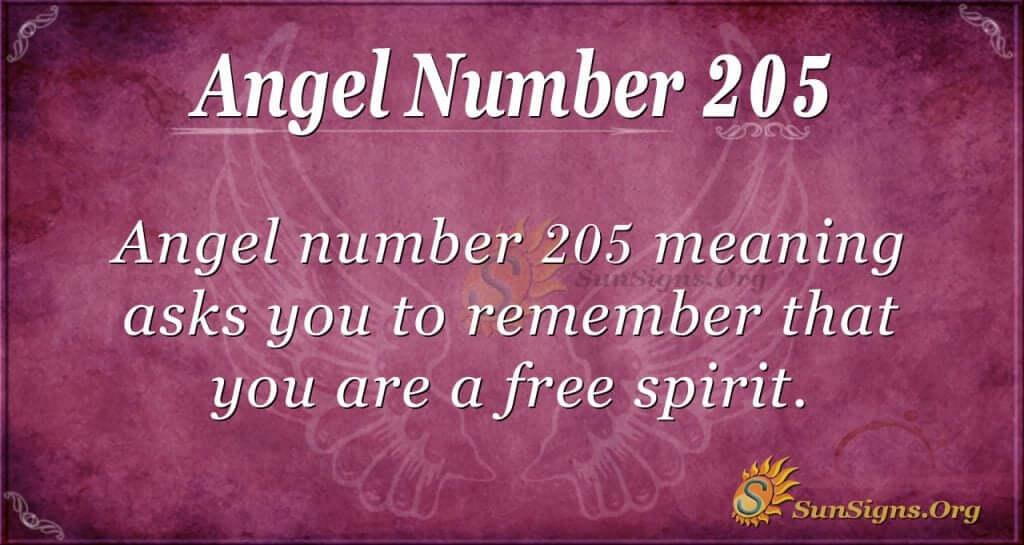 angel number 205