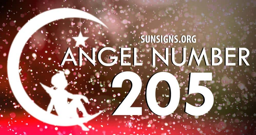 angel number 205