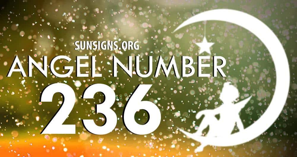angel number 236