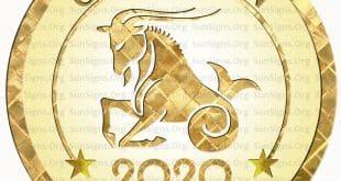 capricorn horoscope 2020