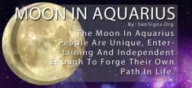 The Moon In Aquarius People Are Unique, Entertaining And Independent Enough To Forge Their Own Path In Life.
