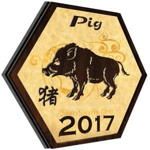 Pig 2017 Horoscope: An Overview – A Look at the Year Ahead, Love, Career, Finance, Health, Family, Travel