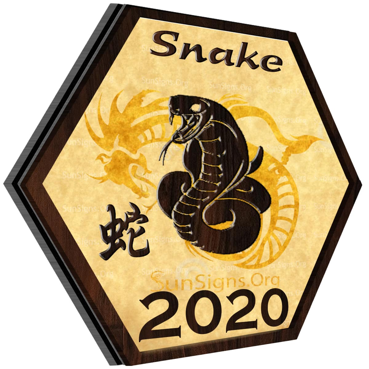 Snake 2020 Horoscope: An Overview – A Look at the Year Ahead, Love, Career, Finance, Health, Family, Travel
