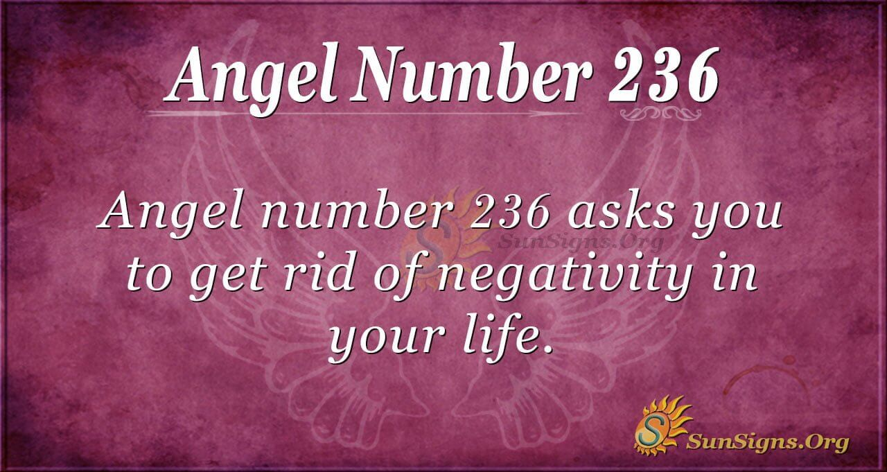 Angel Number 236 Meaning