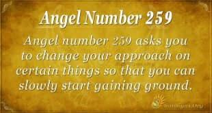 Angel Number 259