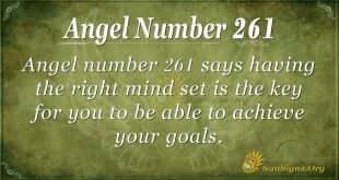 Angel Number 261