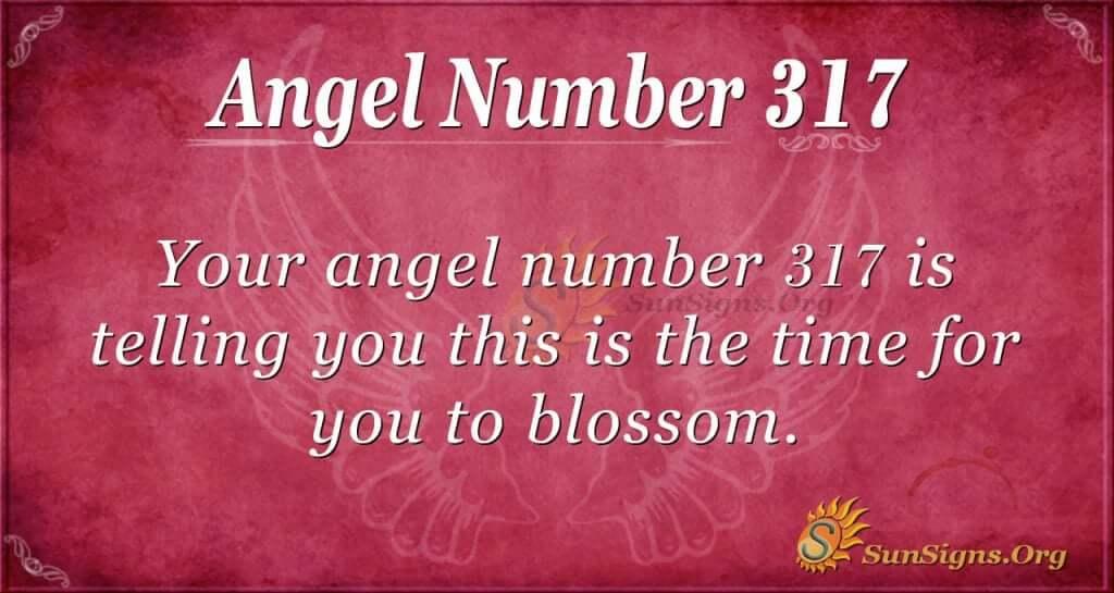 Angel Number 317