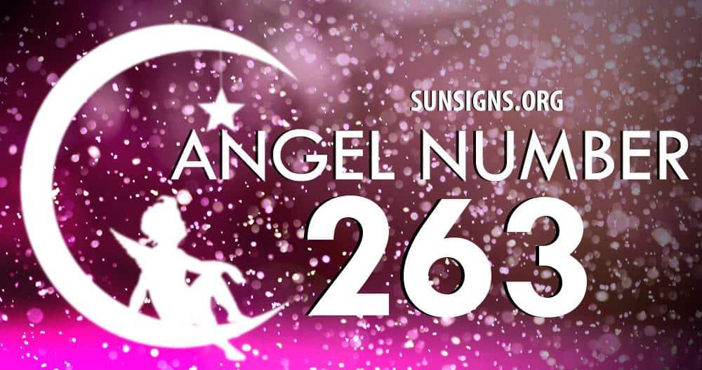 angel number 263
