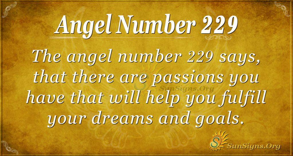 angel number 229