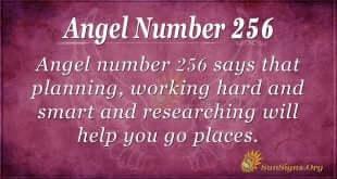 Angel Number 256