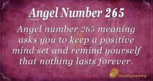 Angel Number 265