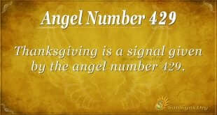 Angel Number 429