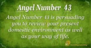angel number 43