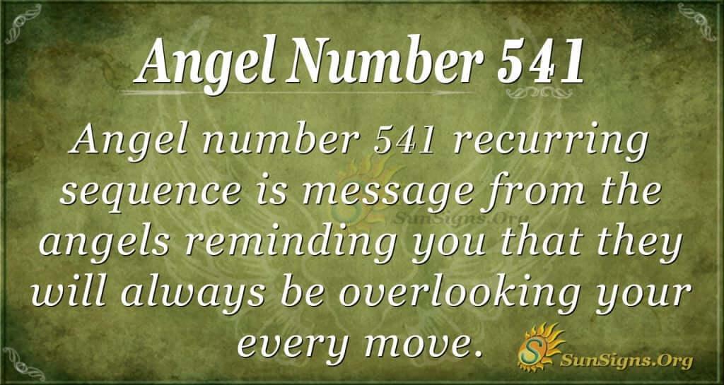 Angel Number 541